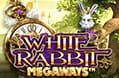 Der White Rabbit Slot.
